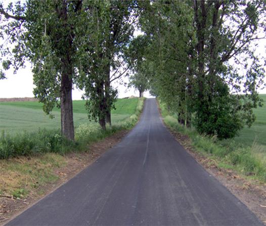Zdjęcie przedstawia drogę Biała-Prężyna